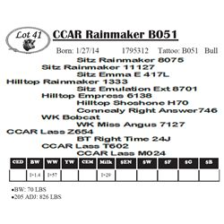 Lot 41 - CCAR Rainmaker B051