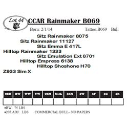 Lot 44 - CCAR Rainmaker B069