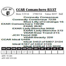 Lot 64 - CCAR Comanchero B337