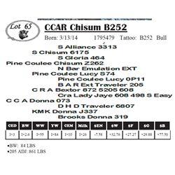 Lot 65 - CCAR Chisum B252