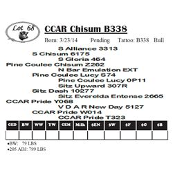 Lot 68 - CCAR Chisum B338