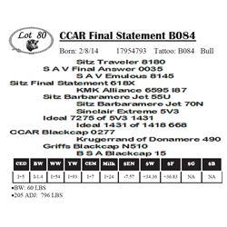 Lot 80 - CCAR Final Statement B084