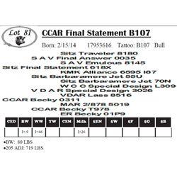 Lot 81 - CCAR Final Statement B107
