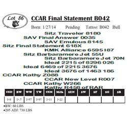 Lot 86 - CCAR Final Statement B042