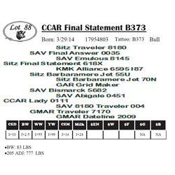 Lot 88 - CCAR Final Statement B373