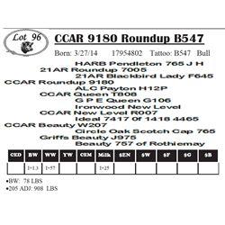 Lot 96 - CCAR 9180 Roundup B547