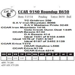 Lot 97 - CCAR 9180 Roundup B650