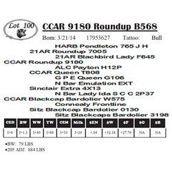 Lot 100 - CCAR 9180 Roundup B568