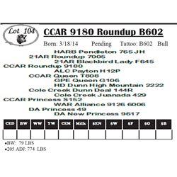 Lot 104 - CCAR 9180 Roundup B602