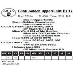Lot 112 - CCAR Golden Opportunity B137