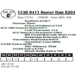 Lot 113 - CCAR 0411 Hoover Dam B204