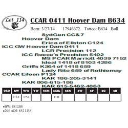 Lot 114 - CCAR 0411 Hoover Dam B634