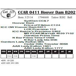 Lot 115 - CCAR 0411 Hoover Dam B202