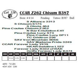 Lot 116 - CCAR Z262 Chisum B387