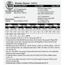 Lot 9 - Basin Dame 3053