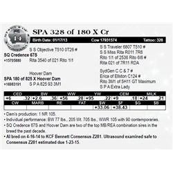 Lot 14 - SPA 328 of 180 X Cr