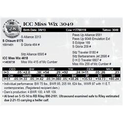 Lot 28 - ICC Miss Wix 3049