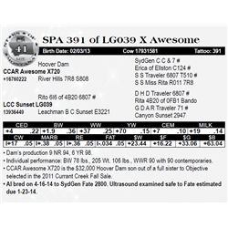 Lot 41 - SPA 391 of LG039 X Awesome
