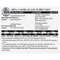 Lot 49 - SPA 3105B of 225 X BH U285