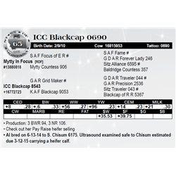 Lot 65 - ICC Blackcap 0690