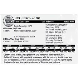 Lot 64A - ICC Erica 4190