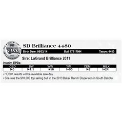 Lot 70A - SD Brilliance 4480