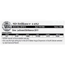 Lot 73A - SD Brilliance 4482