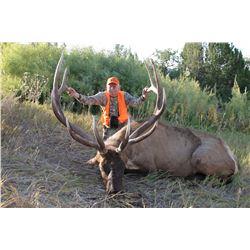 2015 Pahvant Landowner Elk, Hunters Choice