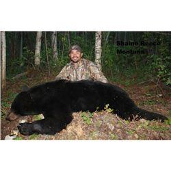 2015 Spring Black Bear Hunt, Alberta Canada (one hunter)