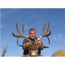 2015 Washington East Side Deer