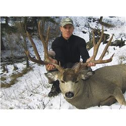 "2015 Montana ""Super Tag"" Statewide Deer"