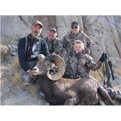 2015 Newfoundland Mountain California Bighorn Conservation Permit