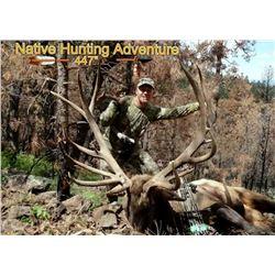 San Carlos Apache Tribe Bull Elk Chairman's Permit