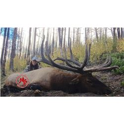 2015 Beaver Any Weapon Elk Conservation Permit