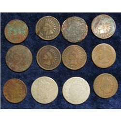 116. (9) Indian Cents & (3) Liberty Nickels. All circulated.