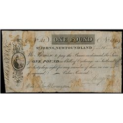 SHANNON, LIVINGSTON & CO., St. John's, NL. One Pound. Nov. 17, 1815. NL8….