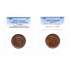 Large Cent.  1856. Upright 5.  PCGS graded Genuine.  Unc details.  Cleaning…