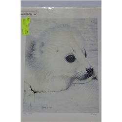 BABY HARP SEAL BY R.FEHR 194/500 SIGNED PRINT