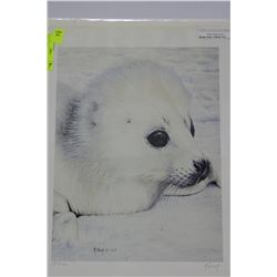 BABY HARP SEAL BY R.FEHR 293/500 SIGNED PRINT