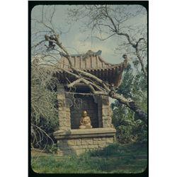 Collection of (42) color amateur slides of Disneyland circa 1956-57.