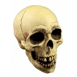 Randotti Haunted Mansion  souvenir skull