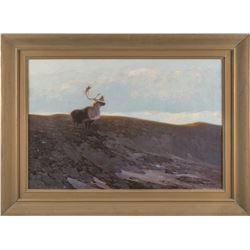 Carl Rungius, oil on canvas