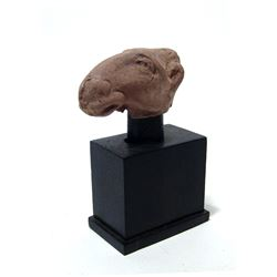 Egyptian terracotta head of a camel, Roman Period