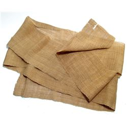 A large swath of ancient Egyptian mummy linen