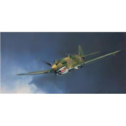 Jack Fellows Tiger! Robert T Smith AVG P-40C Number 77