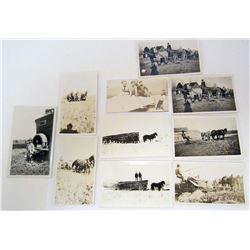 LOT OF 10 ANTIQUE PHOTOS OF HORSES PULLING FARMING EQUIP