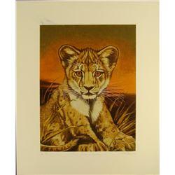 Marty Katon Signed Art Print Lion Cub