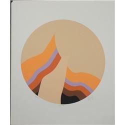Doug Danz Signed Abstract Print Proof Phoenix VI