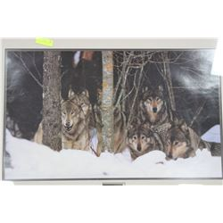WOLF PACK FRAMED PICTURE