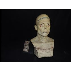 DISPLAY FULL BUST FOR MASKS HAT WIG ETC HARD